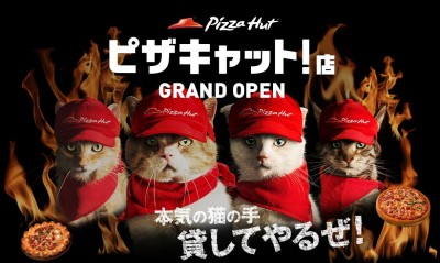Pizza Hut in Japan Introduces Pizza Making Cats