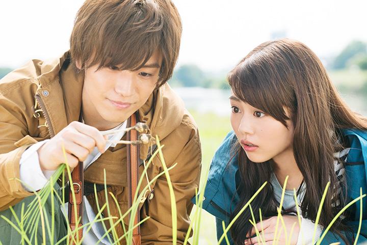 'Shokubutsu Zukan' movie releases poster and trailer