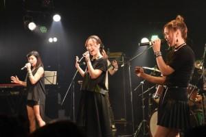 Newspecia performs