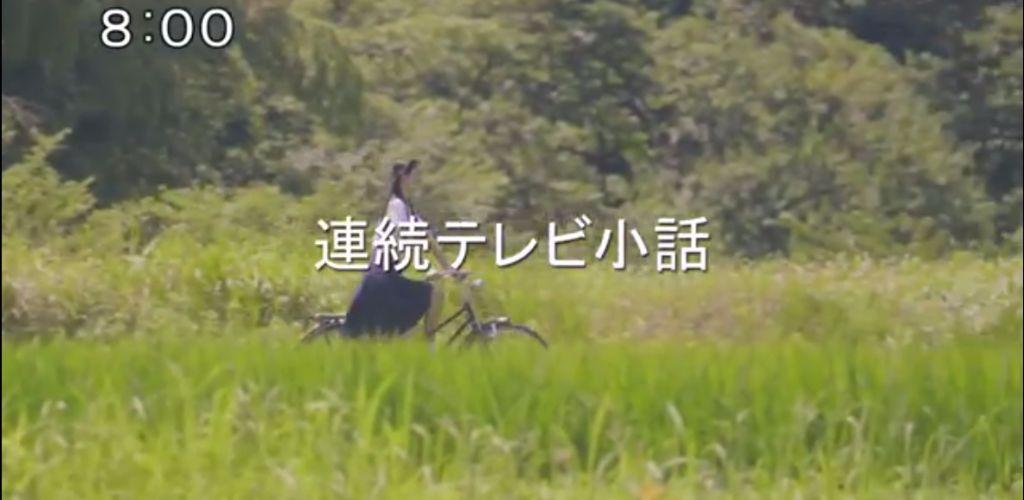 Yufu Terashima is the Star of a Daytime Drama in 'Watashi ni Naru' PV