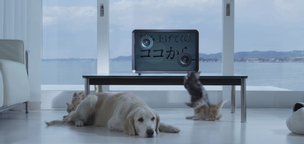 "Watch Ai Otsuka's simple, but adorable MV for ""Starting Pistol"""