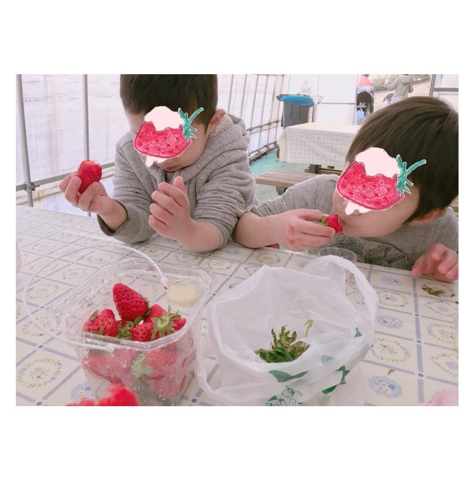 nONO-STRAWBERRIES