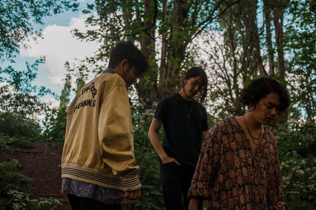 The fin. to Release First New Album in Over 3 Years