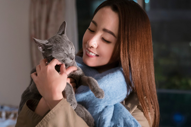 "Rejoice cat lovers, Erika Sawajiri's ""Neko wa Daku Mono"" DVD/blu-ray announced"
